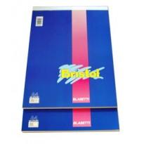 BLOCCO NOTE 210X297MM 5MM 50GR 70FG BRISTOL BLASETTI 1037 - Conf da 10 pz.