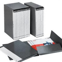 Gruppo DELSO LINE I54 6 cartelle 2 lembi dorso 1,5cm ESSELTE 390954040