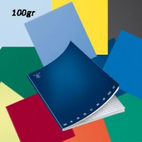 MAXIQUADERNO A4 36fg+2 100gr 5mm c/marg MONOCROMO 100 02217800Q - Conf da 10 pz.