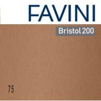 Conf.25 cartoncino Bristol Color 200gr 50x70cm marrone 75 Favini A358022