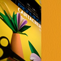 Blister 10fg cartoncino 35x50cm 220gr aragosta Cartacrea Fabriano 46435126