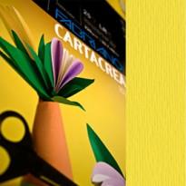 Blister 10fg cartoncino 35x50cm 220gr cedro Cartacrea Fabriano 46435125