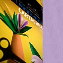 Blister 10fg cartoncino 35x50cm 220gr violetta Cartacrea Fabriano 46435124