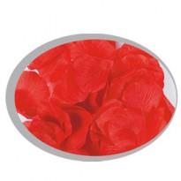 Busta da 144 petali rossi Big Party 15020