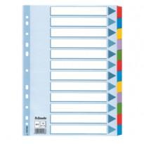 Intercalare MYLAR 12 tasti colorati - f.to A4 ESSELTE 100169
