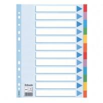 Intercalare cartoncino 12 tasti colorati - f.to A4 Esselte 100194