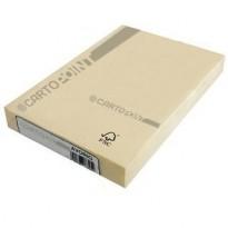 Carta Cartopoint - PERGAMENA AVORIO formato A4 - gr. 160 (conf.100)