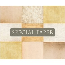 SPECIAL PAPER Busta carta PERGAMENA AVORIO cm. 11x22 TQ G 110 gr/mq (confezione da 25 buste)