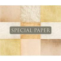 SPECIAL PAPER Carta FLORA AVORIO A4 - cm. 21x29,7 130 gr/mq (scatola da 100 fogli)