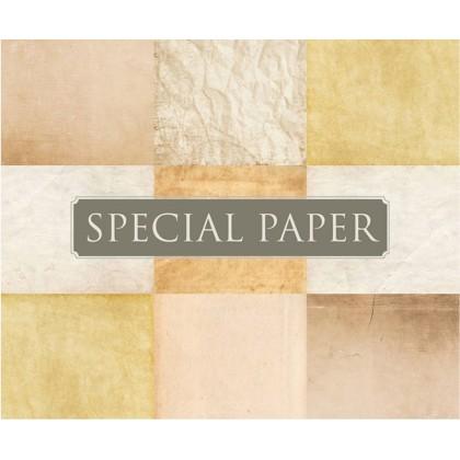 SPECIAL PAPER Buste carta FLORA AVORIO cm. 11x22 TQ S 130 gr/mq (confezione da 25 buste)