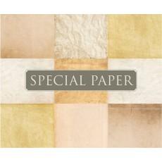 SPECIAL PAPER Buste carta FLORA AVORIO cm. 12x18 TP G 130 gr/mq (confezione da 25 buste)